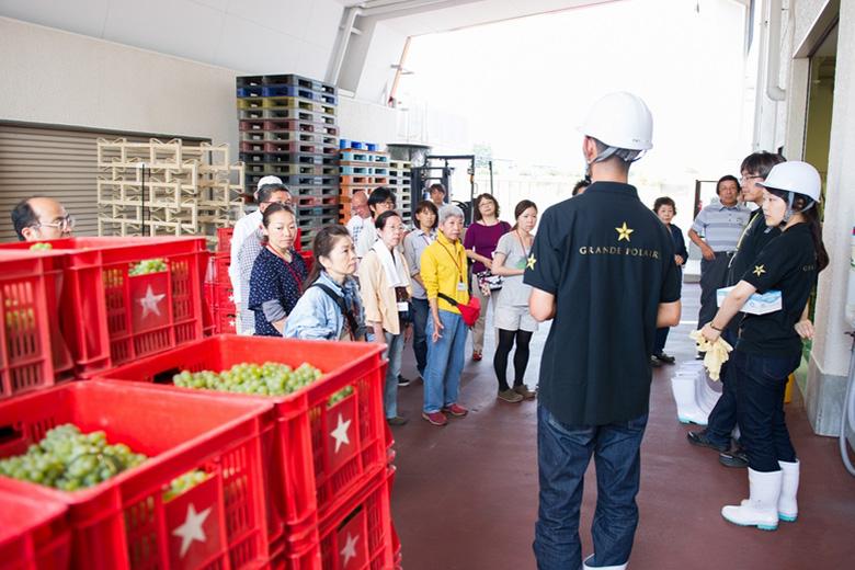 【グランポレール勝沼ワイナリー】オリジナルワインへ最後の仕込み体験!