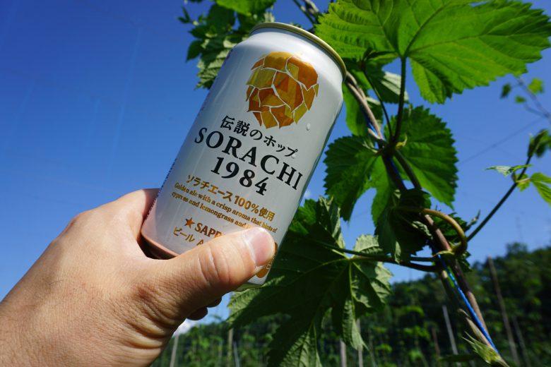 伝説のホップだけでつくったビール「SORACHI1984」をつなぐ者たちの物語<エピソード1~「育種家」という仕事 前編~>